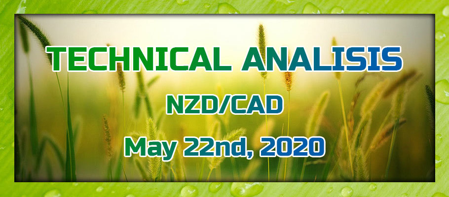 NZD/CAD May Rise Higher, Considering Strong NZD and Weak CAD due to Low Oil Prices